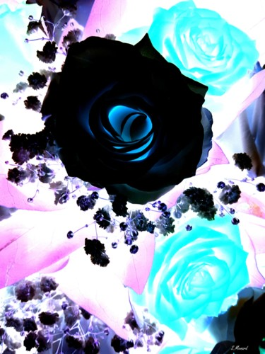 Abstract Roses 2
